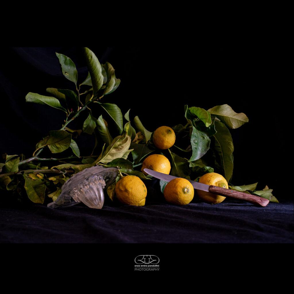 Fotografo Aziendale Genova